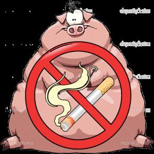 dampak merokok pada kolesterol