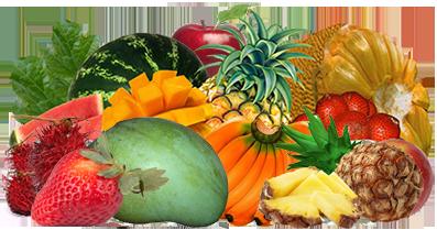 usaha kripik buah buahan