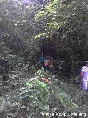 Hutan Rante Wulung